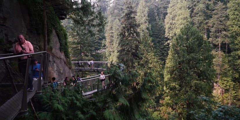 roofing contractor taking a walk on the suspension bridge